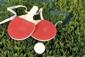 raquette pingpong tennisdetable